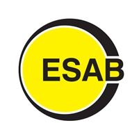 East Sussex Association of Blind and Partially Sighted People Logo Yellow 2016